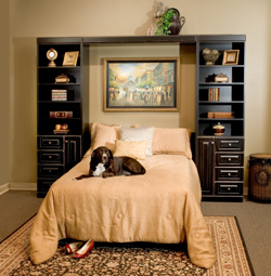 Murphy Bed Furniture Store