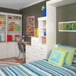 kid bedroom with custom desk and murphy bed