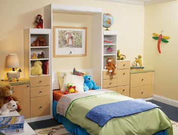 Kids Bedroom with Custom Wall Bed/ More Space Place
